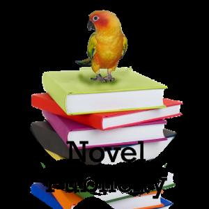 -NovelPublicity-